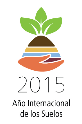 Logo IYS